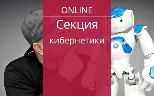 секция кибернетики